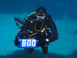иллюстрация к статье подводная фотография