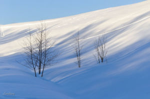 Lora Braun Geometriya zimy