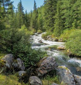 Reka Kizir 1
