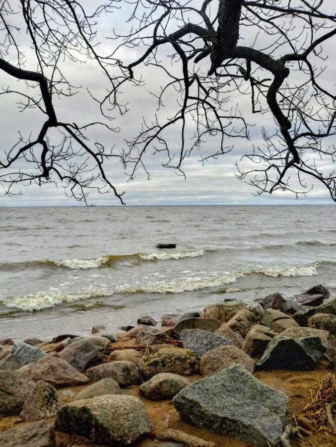 P.Batranov Finskii zaliv